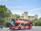Palma-de-Mallorca-Bus-03