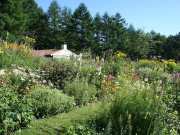 kaze-no-garden