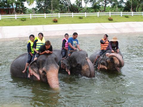 象と水浴びツアー (4)