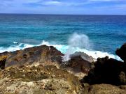 LOHA樂活夏威夷-噴浪口