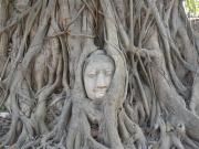 AK_CTOUR_Wat Mahathat2