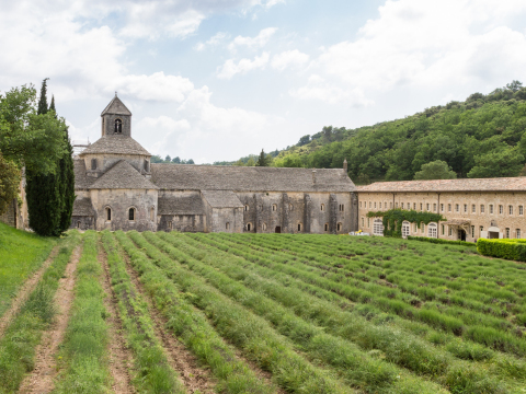 France_Abbaye Notre-Dame de Senanque_shutterstock_1143052673