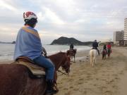 ビーチ乗馬7