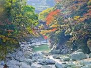 Japan_Tokushima_Iya valley_shutterstock_783321295