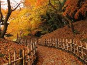 Japan_Kagawa_Takamatsu_RitsurinGarden_shutterstock_771350257