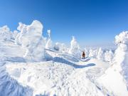Japan_Miyagi_or_Yamagata_Zao_ice_trees_snow_monsters_shutterstock_1039323040