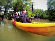 Million River mangrove kayak Okinawa