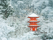 Japan_Kyoto_Kiyomizu_dera_pagoda_shutterstock_1093633814