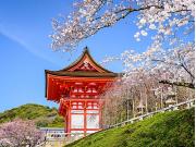 Japan_Kyoto_Kiyomizu-dera Temple_cherry blossom_shutterstock_248704504