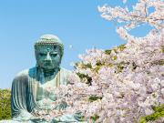 Japan_Kanagawa_Kamakura_buddhacherry_blossom_shutterstock_1052557481