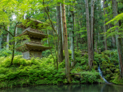 Japan_Nagano_Kozenji_shutterstock_1136761562