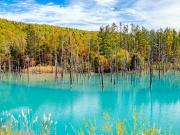 Japan_Hokkaido_Biei_Blue_Pond_shutterstock_1202113783