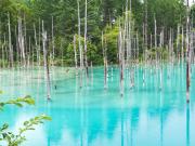 Hokkaido_Biei_Blue_Pond_shutterstock_720662332-1