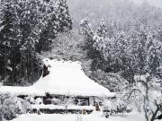 B0800 美山(冬)