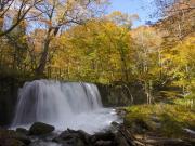 奥入瀬渓流滝