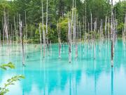 Hokkaido_Biei_Blue_Pond_shutterstock_720662332