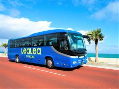観光バスツアー 3大大橋を渡る宮古5島巡り!宮古を愛するガイドと巡る絶景&ディープトリップ<宮古島>