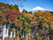 Jpapn_Shizuoka_Shiraito_Falls_autumn_leaf_in_Fujinomiya_shutterstock_685498582