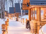 Hokkaido_Furano_Ningle_Terrace_shutterstock_1385270615