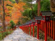 kifune autumn5       ※copywriter【photo imamiya yasuhiro】