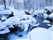奥入瀬渓流 冬1