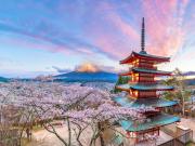 Japan_Yamanashi_Chureito_Fuji_cherry blossom_shutterstock_1303368373