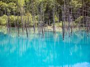 Hokkaido_Biei_Blue_Pond_shutterstock_537698452
