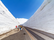 Japan_Toyama_shutterstock_Tateyama_Kurobe_Alpine_Route_shutterstock_788612002