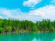 Japan_Hokkaido_Biei_Blue_Pond_summer_shutterstock_1655141308