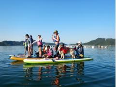 鳴門海峡周辺でSUP体験 初心者でも安心!穏やかなウチノ海やスクノ海で海上散歩<2時間または半日/鳴門市>