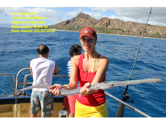 Reviews by families with young children participated in for Bottom fishing oahu