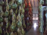 ハモン工場にて・塩漬け肉の熟成