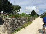 竹富島のサイクリング