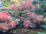 ブッチャートガーデンの日本庭園