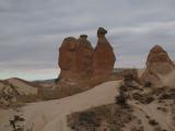 ラクダの形をした岩
