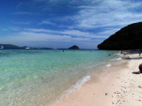 コーラル島美しい!