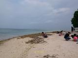 カイジ浜での星の砂探し
