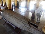 バゴー王宮跡:高級木材チークがベトナムの主要輸出品と知りました。