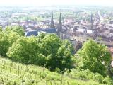 Obernaiオベルネもぶどう畑に囲まれています。
