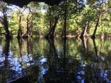 マングローブの生い茂ったエリアの近くに洞窟が・・・☆