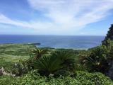 大石林山の林からぱっと開ける海と空!