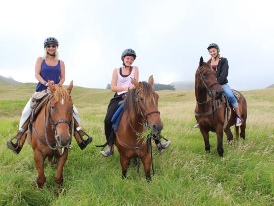Waimea Big Island Horseback Riding