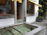 シュタイン・アム・ラインの入り口近くにあった水飲み場。ねこちゃんが端っこに座っている像が可愛かったです。