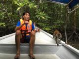 ガイドさんと自然の猿