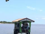 水牛車だ由布島へ