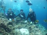 海底世界真有趣