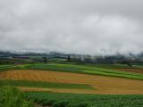一瞬雨があがり、雲が漂うパッチワークの丘はとても幻想的でした。