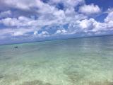透き通った綺麗な海!