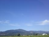 晴天のナパバレー