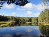 秋のヌークシオ国立公園